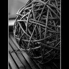 nido de pajaro