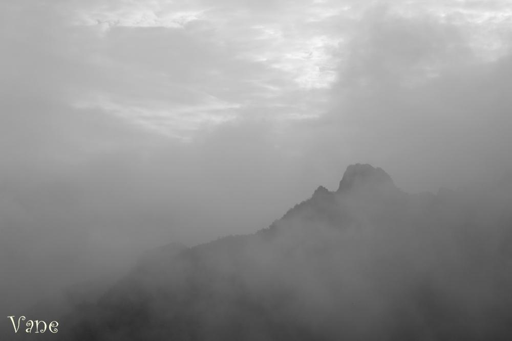 ... Niebla ...