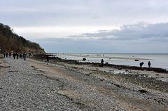 Niedrigwasser bei Wilhelmshöhe am 27.12.2020