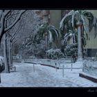Nieva en Barna-VII