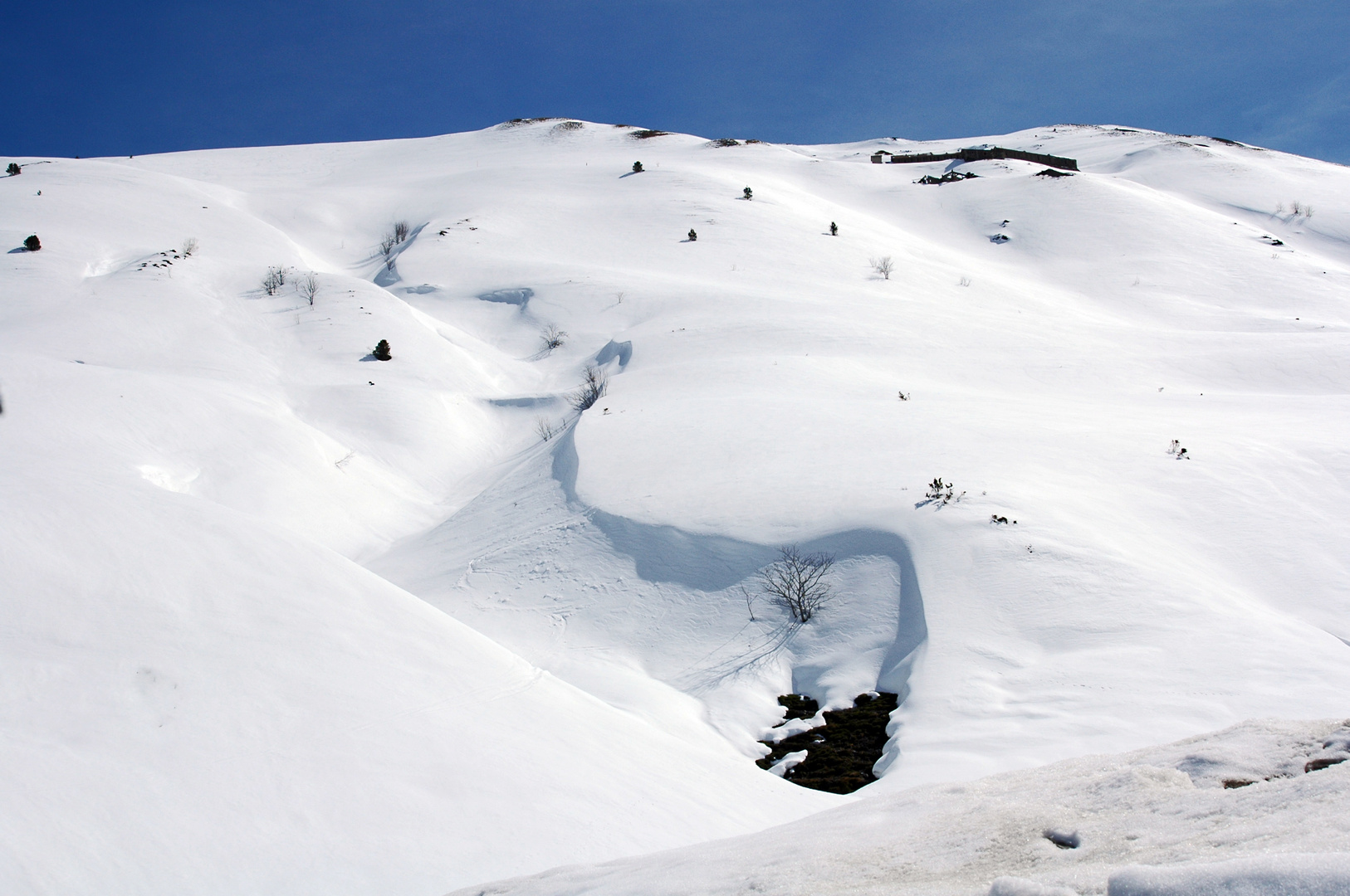 Nieve -1-
