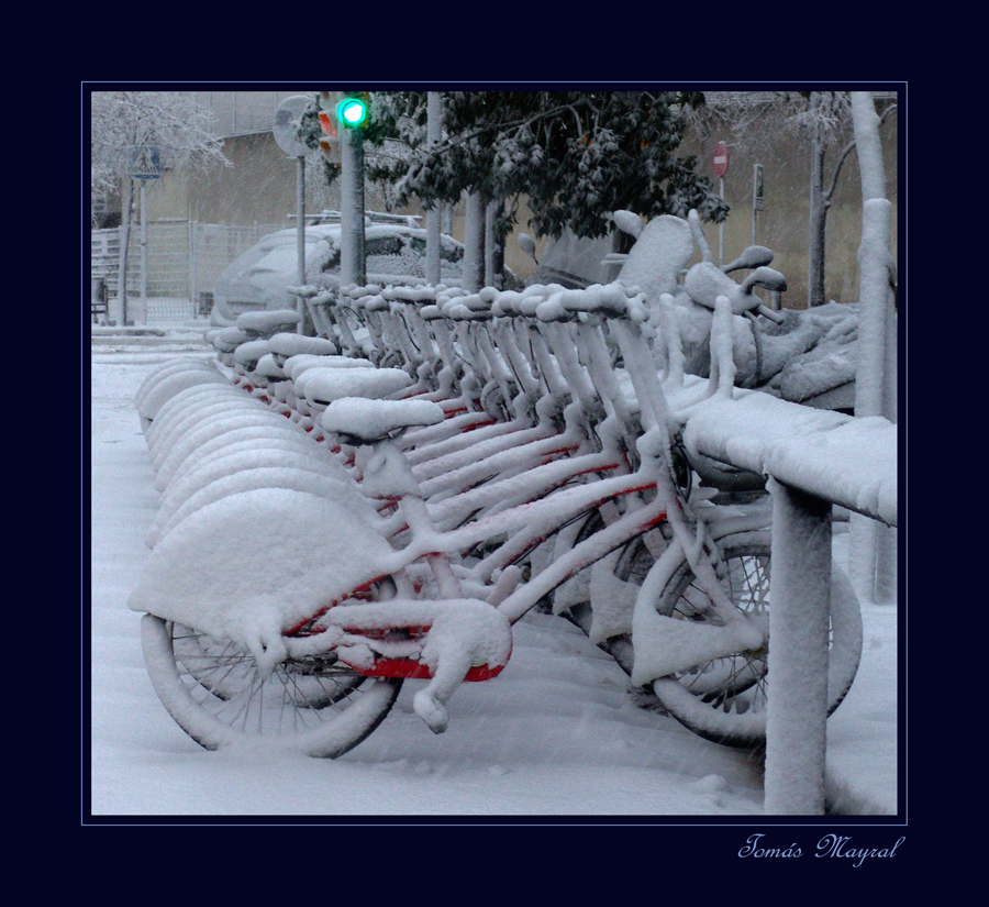 Nieve en Barna-III
