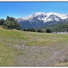 Nieve y bosques, Cotos, Madrid. Pano (3 Img.) I