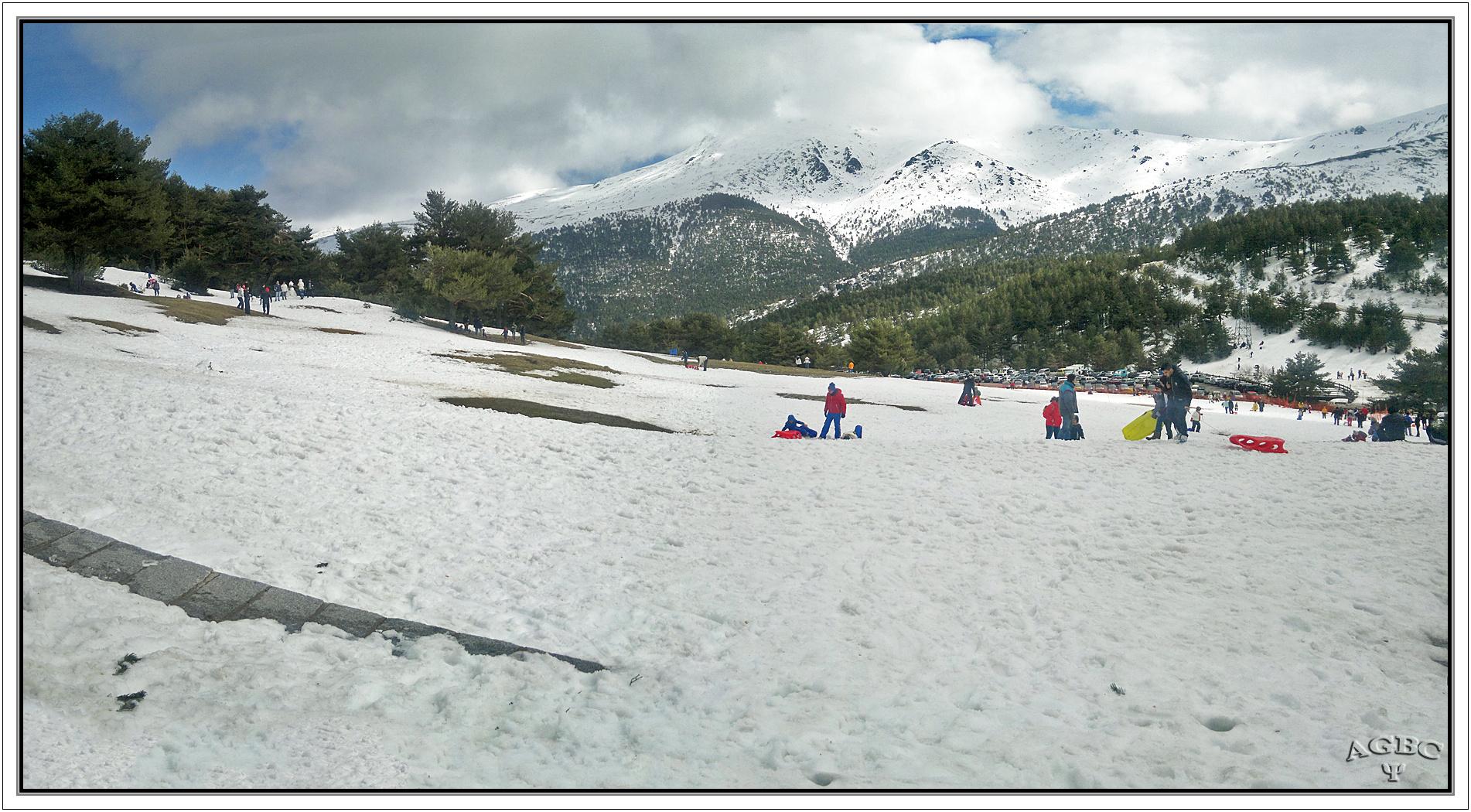 Nieve y bosques, Cotos (nevado), Madrid. Pano (2 Img.) II