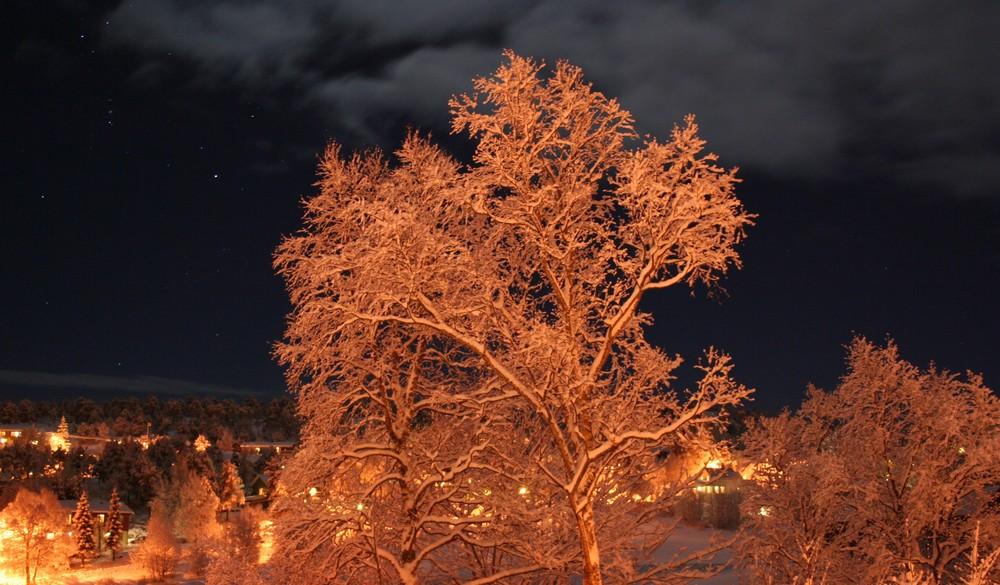 Night at kvalvog in Norway