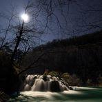 Night in Paradise II