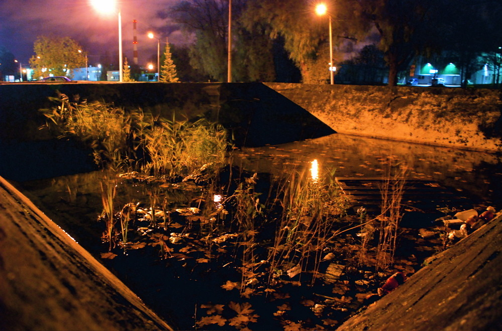 Night Life in Concrete Pool