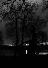night.fall