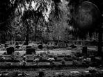nightmare of the gravedigger