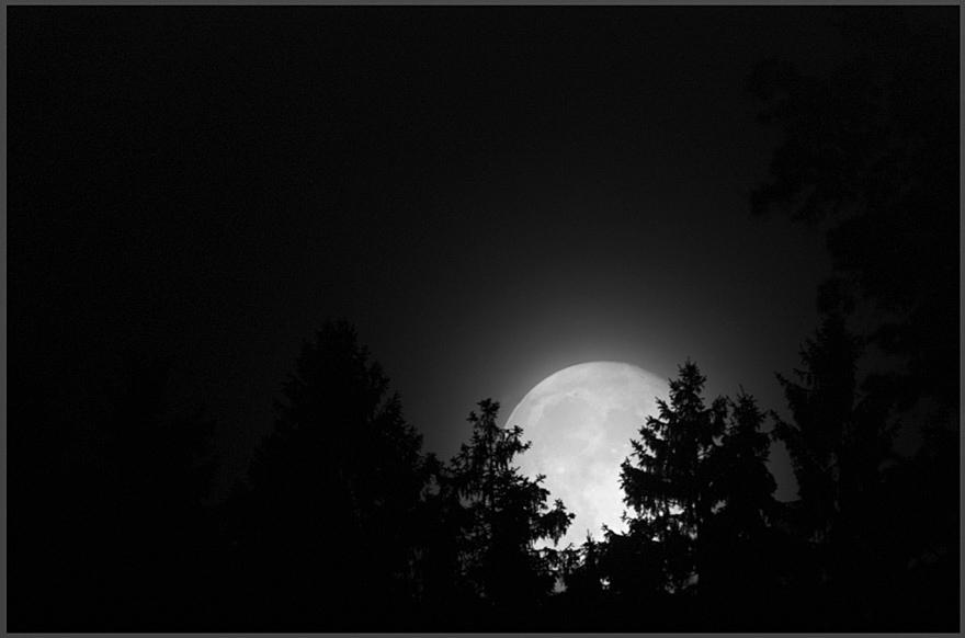 nightview ... - der wächter der nacht #3