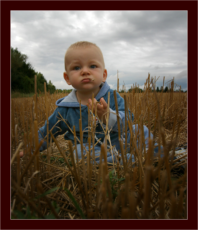 Niklas in a strawfield