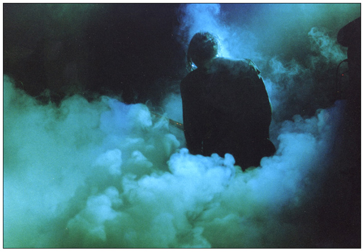 Niko im Nebel