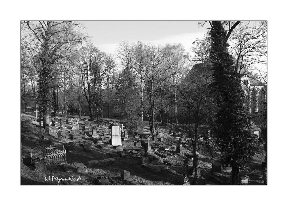 Nikolaifriedhof I