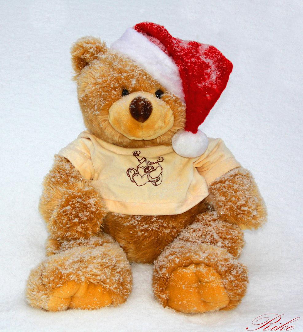 Nikolausi Foto Bild Stillleben Teddies Motive Bilder Auf Canon Eos Couple Bear