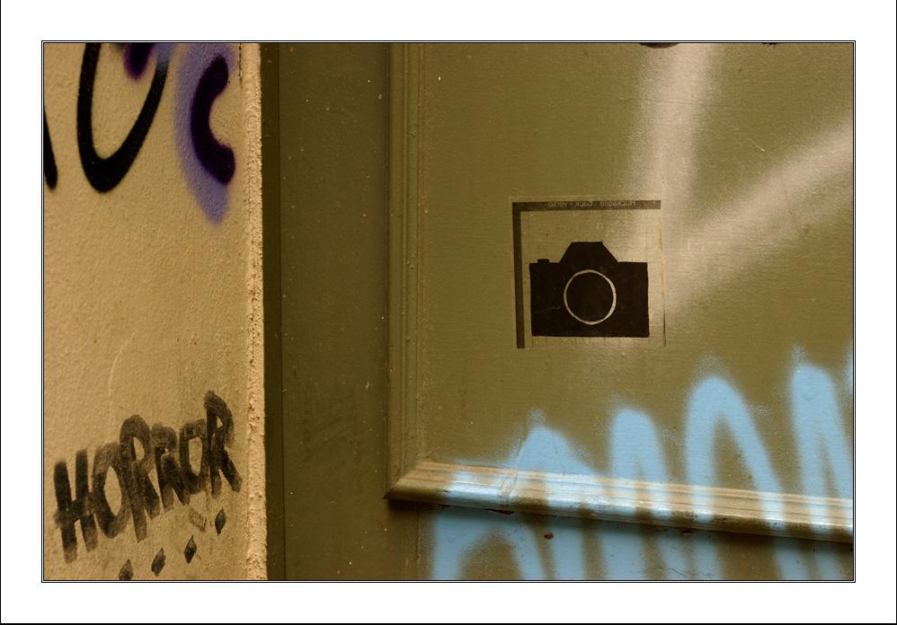 Nikon D90s