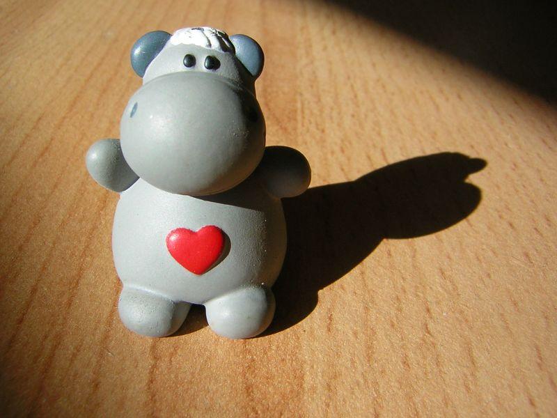 Nilpferd in love :)