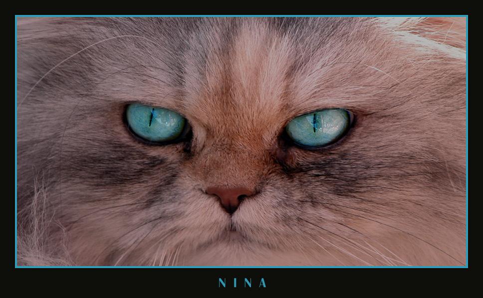 Nina Nr. I