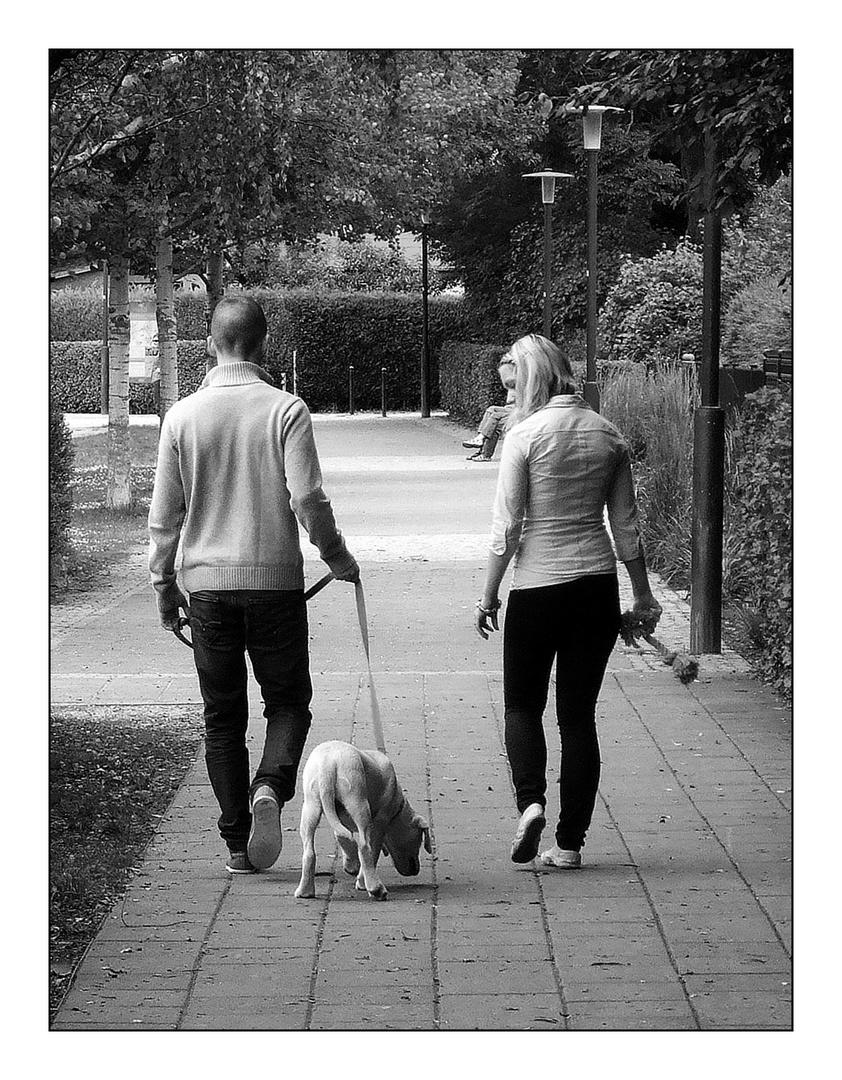 nix mehr mit Händchenhalten beim Spaziergang !!