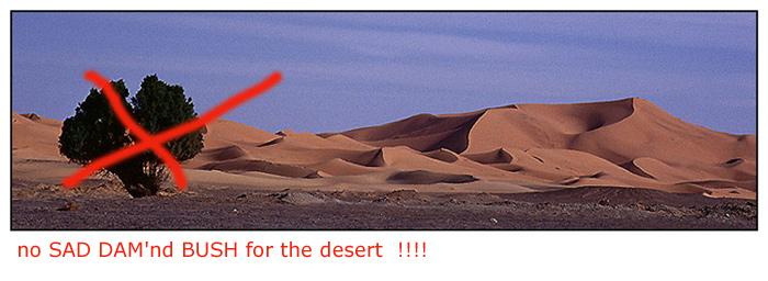 no SAD DAM'nd BUSH for the desert  !!!