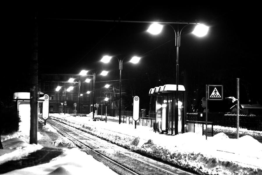 no train, no bus just snow