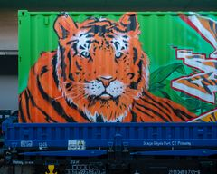 noah's train tiger container