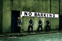 NO.BARKING