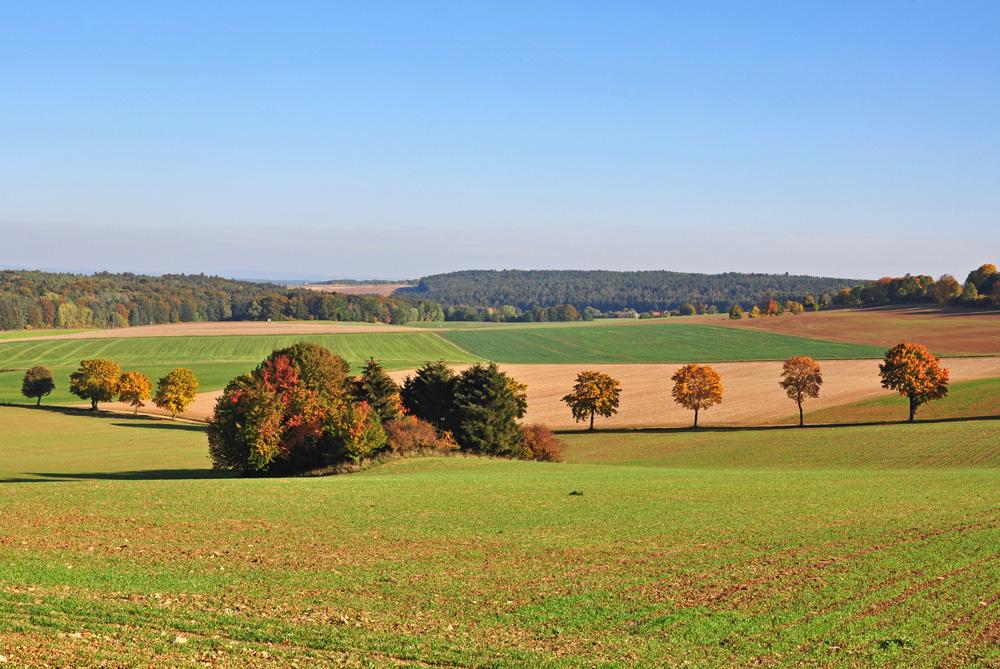 Noch ein Herbstblick...