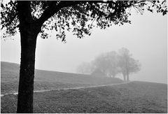 Noch ein Nebelbild ...