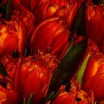 noch einmal Blumen