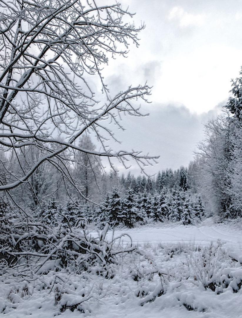 noch einmal schnee ...