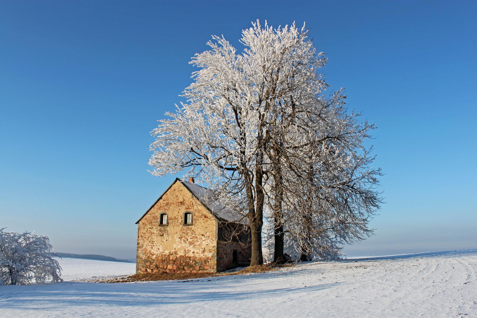 Noch einmal Winter ...