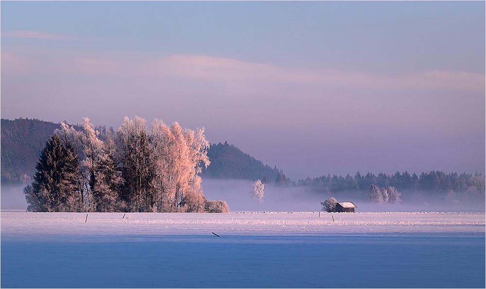 Noch einmal Winter
