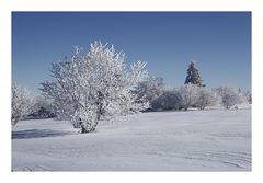 Noch ist Winter...