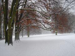 Noch ist Winter ....