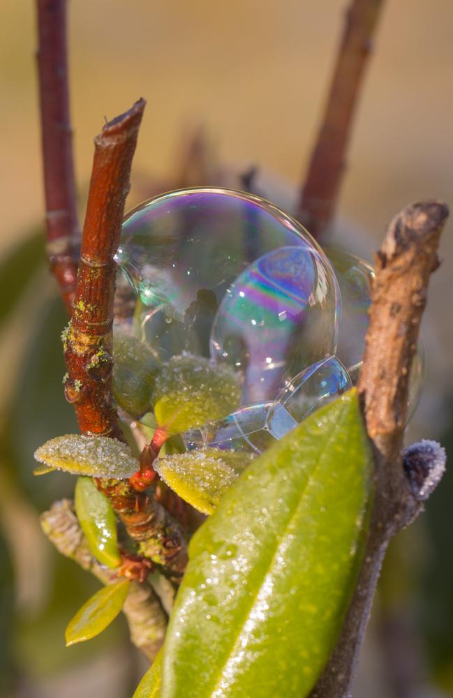 noch mal eine Blase :-))