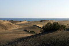 noch mehr Sand - Dünen Las Dunas auf Gran Canaria