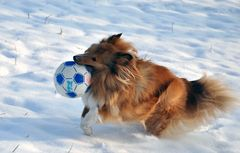 Noch mehr Schnee-Action...
