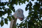 Noch nie einen Diplodocus gesehen........