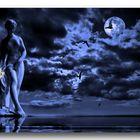 Noche de Venus