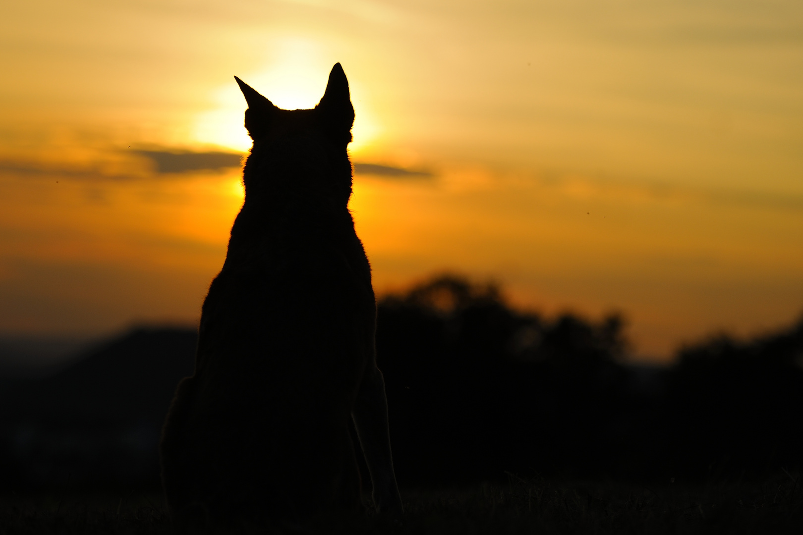 nochmal: Sonnenuntergangfoto