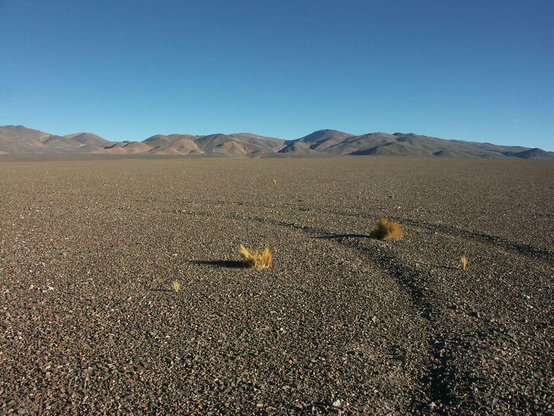 nochmals Atacama
