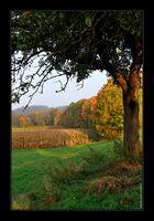 Noch'n Herbstbild