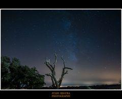 Nocturno : Vía Láctea
