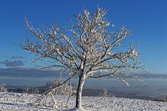 """Nollendorfer Höhe (Naklerov vysina) heute Morgen und Winter """"pur"""" ..."""