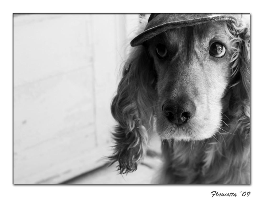 non mi piace questo cappellino :(