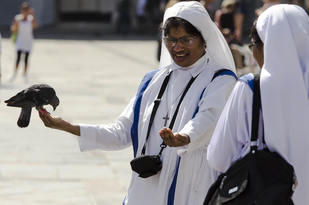 Nonnen füttern eine Taube