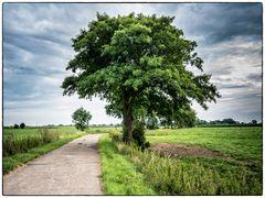 Norddeutschland - Weites Land