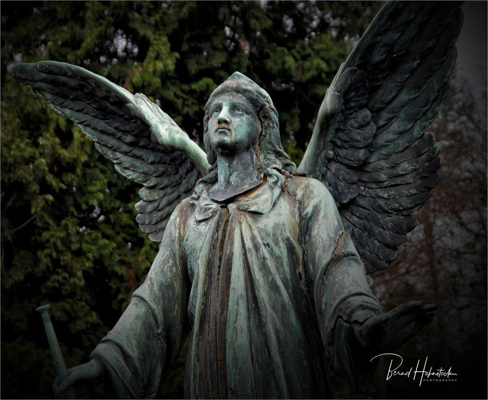 Nordfriedhof ....  der Hoffnung