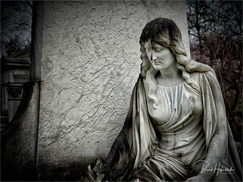 Nordfriedhof zu Düsseldorf ....