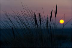 nordic sunrise II